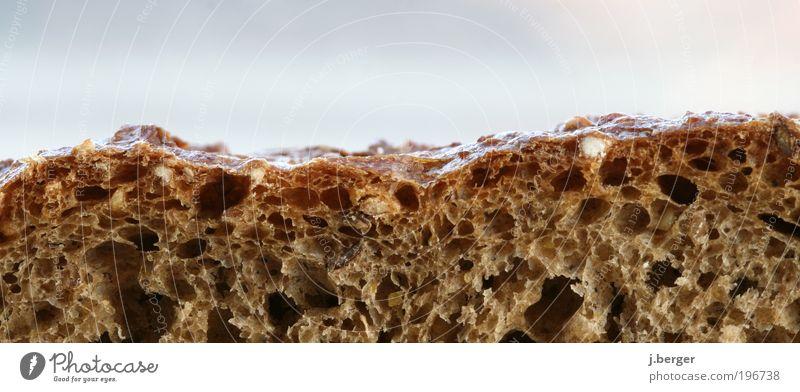 Bread Valley Ernährung Lebensmittel Gesundheit braun gold außergewöhnlich einfach lecker genießen Brot beige herzhaft knusprig Krustenbrot Brotscheibe