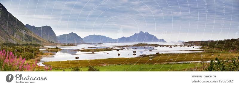 Norwegen Landschaft bewölkt Sommerpanorama Himmel Natur Ferien & Urlaub & Reisen blau Meer Blume Wolken Ferne Strand Berge u. Gebirge Küste Stein Tourismus