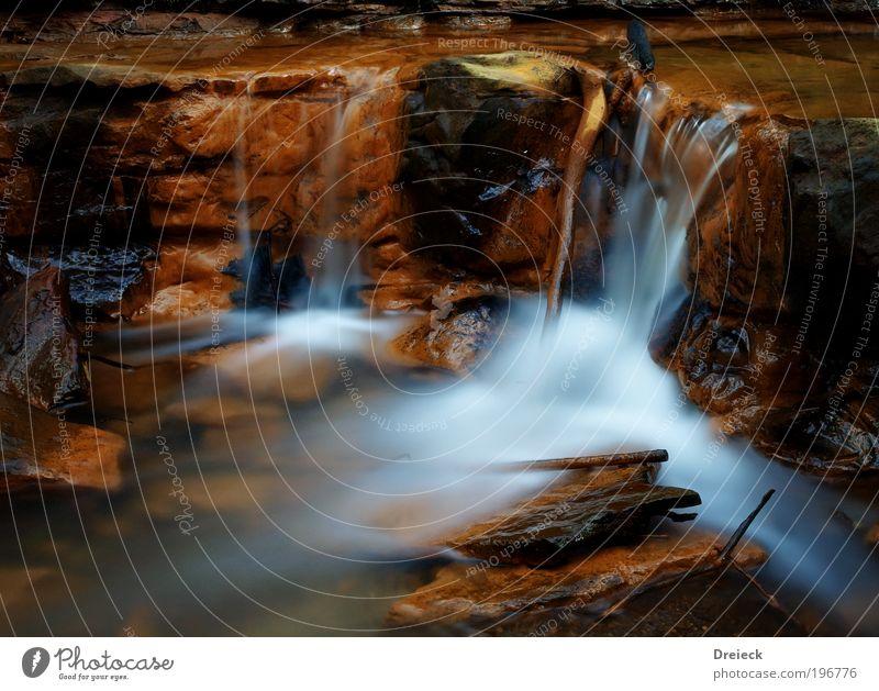 wet Lauf Umwelt Natur Landschaft Erde Wasser Wassertropfen Park Urwald Felsen Bach Fluss Wasserfall Schottland Blick träumen Flüssigkeit weich blau braun gelb