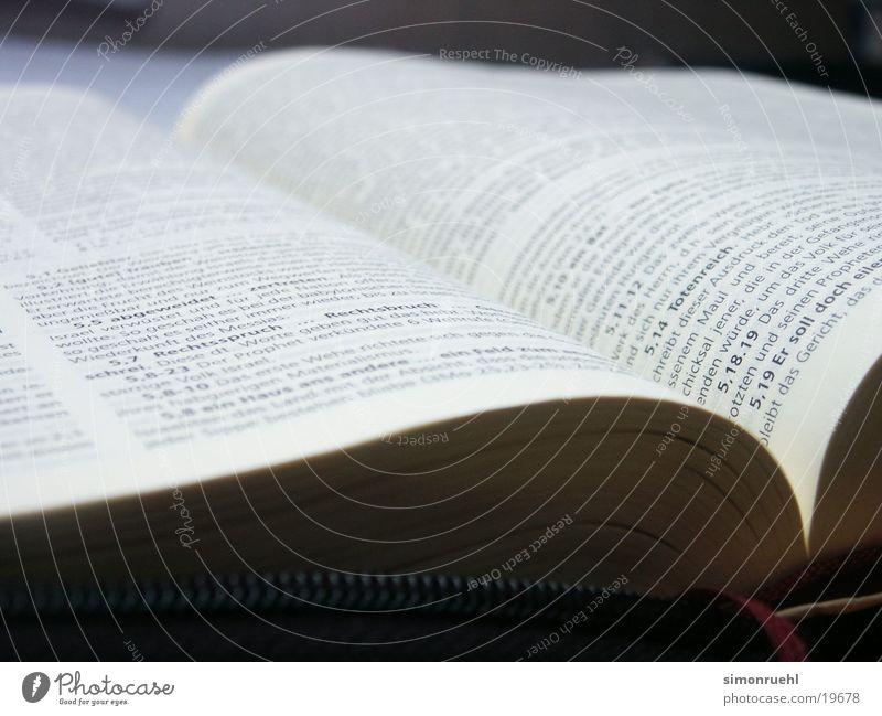 gods word Buch Schriftzeichen historisch heilig Wort Gott Götter Bibliothek Bibel