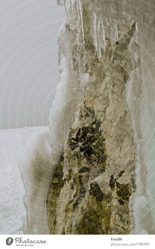 Kreide in Eis Natur Wasser Meer Winter schwarz Einsamkeit gelb Leben Schnee Sand braun Kraft Küste Umwelt