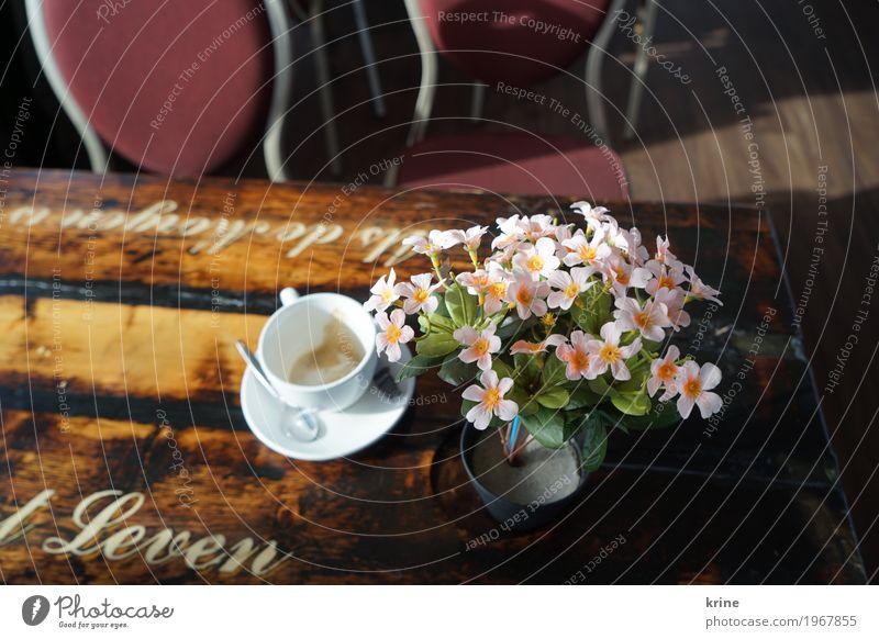 coffee time Kaffee Cappuccino Tasse Ferien & Urlaub & Reisen Ausflug Blühend Originalität rosa Plastikblume künstlich Kunstblume leer Café Niederlande Leben