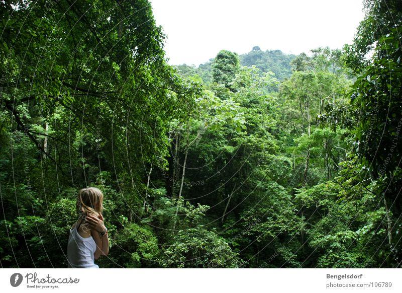 I love the sound of the jungle harmonisch Wohlgefühl Sinnesorgane Erholung ruhig Meditation Ferien & Urlaub & Reisen Tourismus Abenteuer Ferne Freiheit