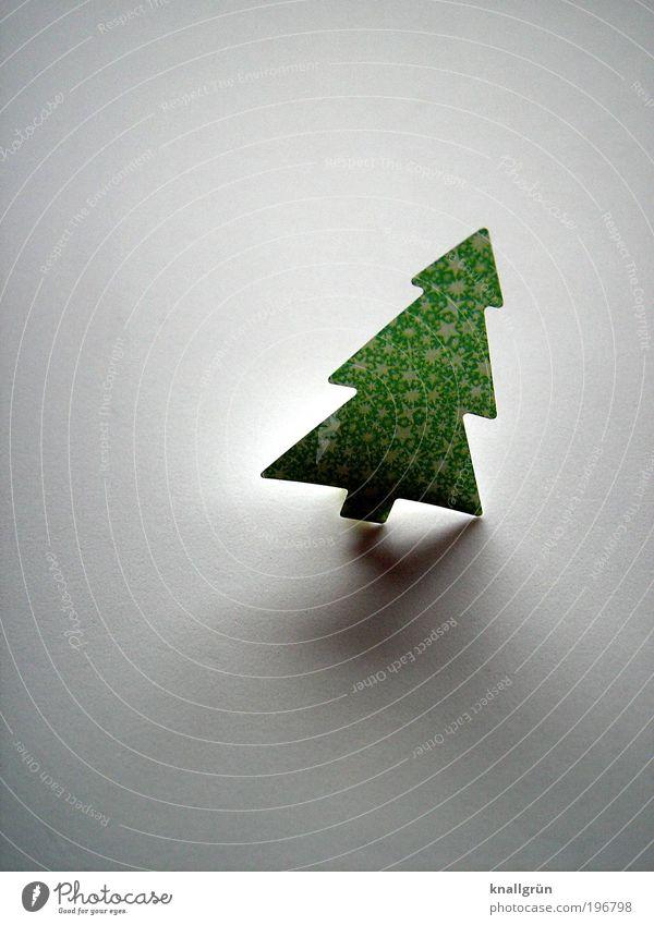 Nachzügler Baum Weihnachtsbaum leuchten grau grün Vorfreude geschmückt Schieflage Weihnachten & Advent Dezember 24. Dezember Farbfoto Gedeckte Farben