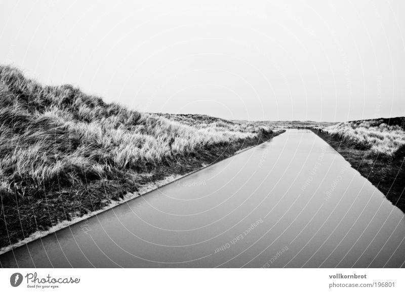 Wasserstraße Natur Landschaft Erde schlechtes Wetter Wind Regen Dünengras Insel Sylt Stranddüne Erholung Unendlichkeit nass schwarz weiß Schwarzweißfoto