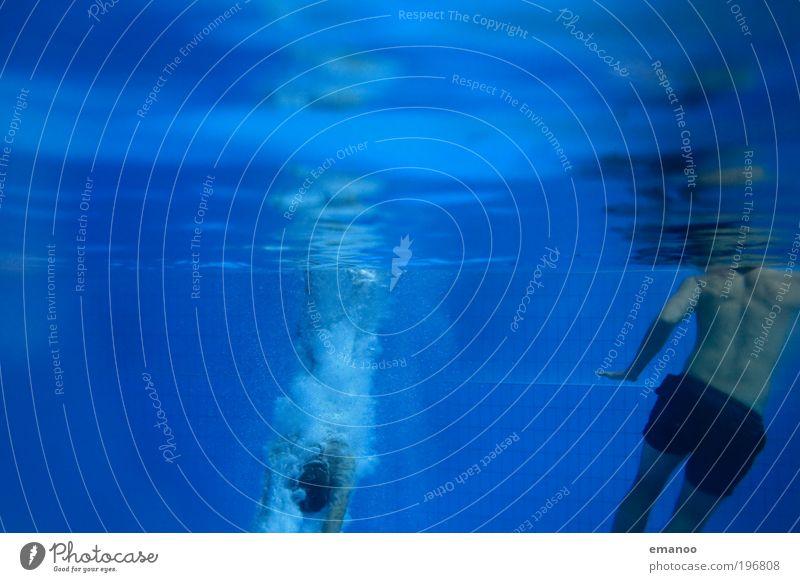 Eintauchphase Mensch Jugendliche blau Wasser Freude Erwachsene kalt Sport Bewegung springen Luft Körper Freizeit & Hobby Schwimmen & Baden nass maskulin