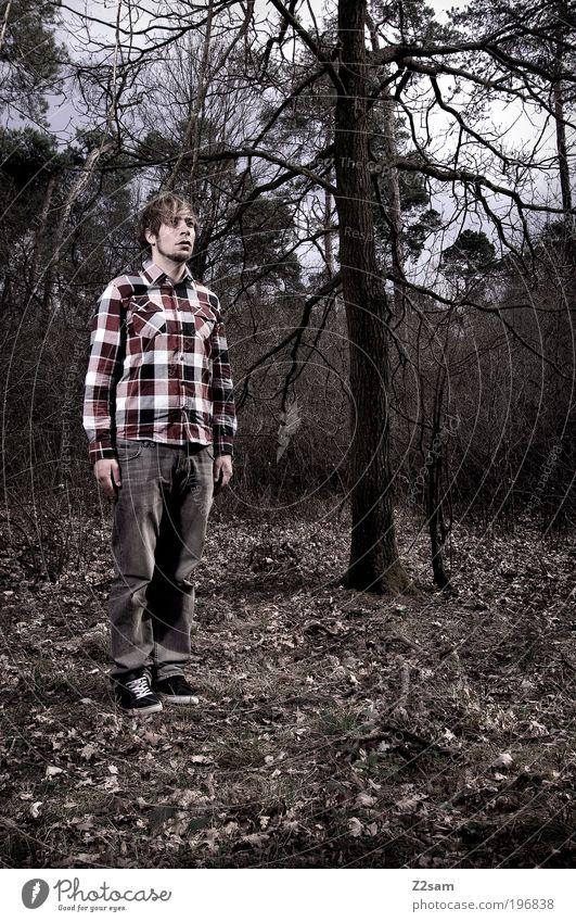 verloren Mensch maskulin Junger Mann Jugendliche 1 18-30 Jahre Erwachsene Umwelt Natur Landschaft Wald Hemd Jeanshose blond Blick stehen träumen warten