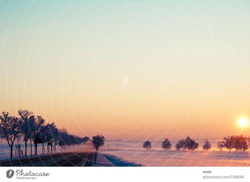 Tag im Winter Sonne Natur Landschaft Himmel Wolkenloser Himmel Horizont Nebel Eis Frost Schnee Baum Feld Verkehrswege Straßenverkehr Wege & Pfade