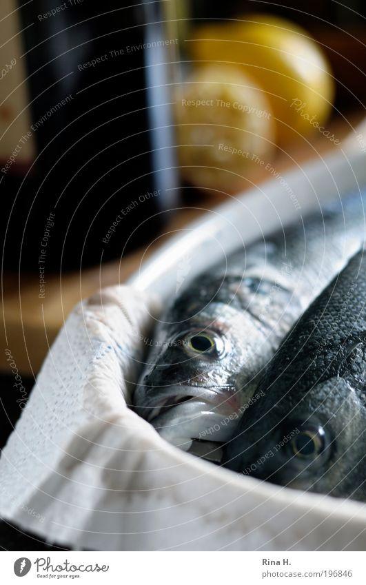 :-( Tod Religion & Glaube Lebensmittel Ernährung Fisch Hoffnung Kochen & Garen & Backen genießen Zusammenhalt lecker Angeln Zitrone Vorfreude Braten