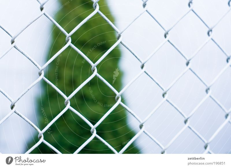 Zaun April Erholung Garten Gartenbau Schrebergarten Kleingartenkolonie laubenpieper Erholungsgebiet Wachstum Maschendrahtzaun Nachbar Grenze Grundstück Pflanze