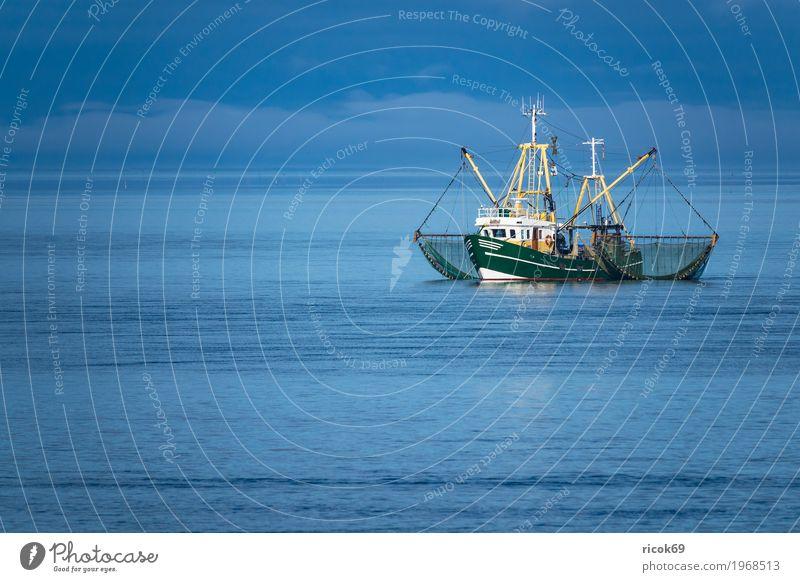 Krabbenkutter auf der Nordsee vor der Insel Föhr Erholung Ferien & Urlaub & Reisen Tourismus Wasser Wolken Küste Fischerboot Wasserfahrzeug Netz Natur