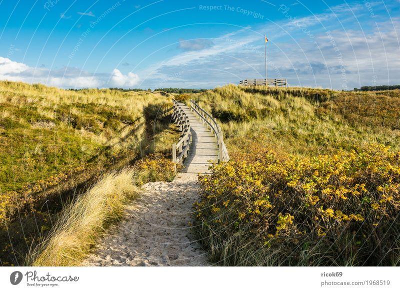 Landschaft in den Dünen auf der Insel Amrum Erholung Ferien & Urlaub & Reisen Tourismus Natur Wolken Herbst Baum Sträucher Küste Nordsee Brücke Wege & Pfade