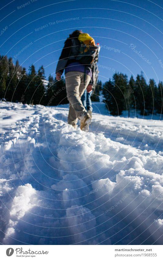 Schneewandern an der Lacherspitz Mensch Jugendliche Junge Frau Freude Winter 18-30 Jahre Berge u. Gebirge Erwachsene Glück Freizeit & Hobby Fröhlichkeit laufen