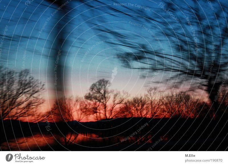 Der Sonne Hinterher. Natur Wasser Himmel Sonnenaufgang Sonnenuntergang See ästhetisch außergewöhnlich frei glänzend natürlich schön Wärme blau rot Stimmung