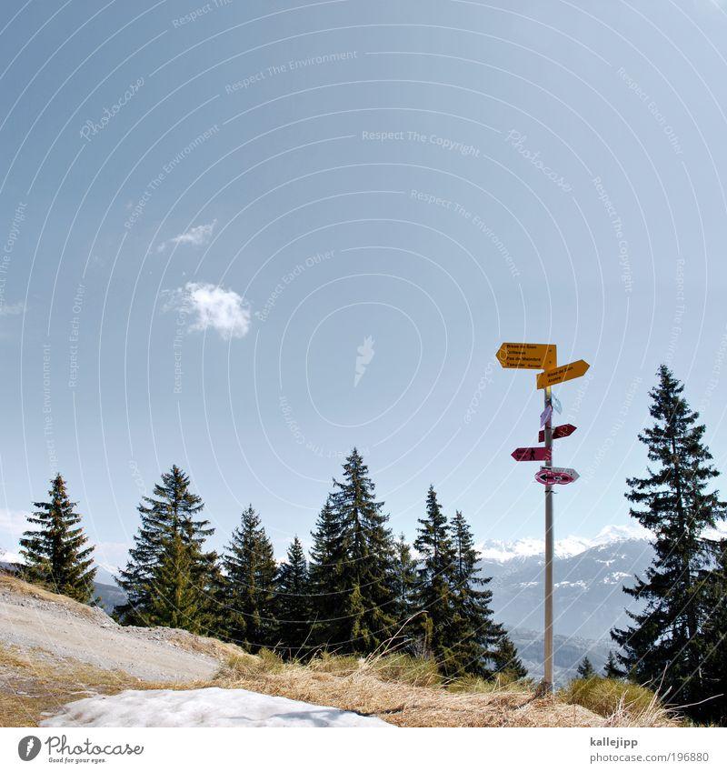 highway to heaven Freizeit & Hobby Natur Himmel Horizont Schönes Wetter Alpen Berge u. Gebirge Schneebedeckte Gipfel Schilder & Markierungen Hinweisschild