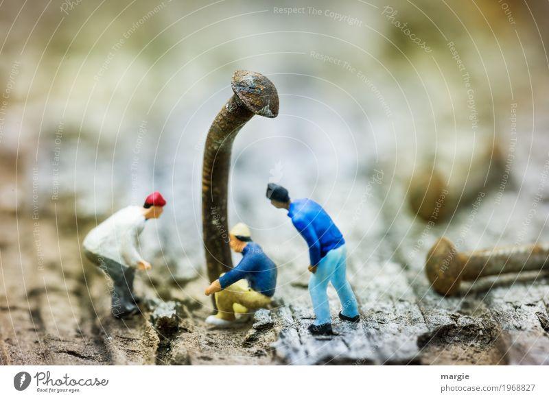 Miniwelten - Warum ist der Nagel krumm? Handwerker Arbeitsplatz Baustelle Dienstleistungsgewerbe Werkzeug Hammer Mensch maskulin Mann Erwachsene 3 braun