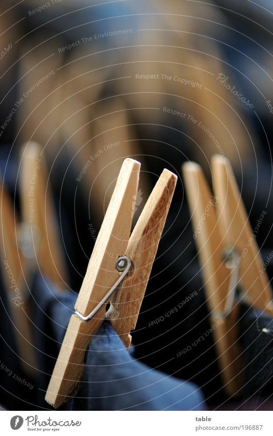 klammern Häusliches Leben Arbeit & Erwerbstätigkeit Bekleidung T-Shirt Stoff Holz Metall hängen dunkel fest frisch nass trocken blau braun schwarz silber