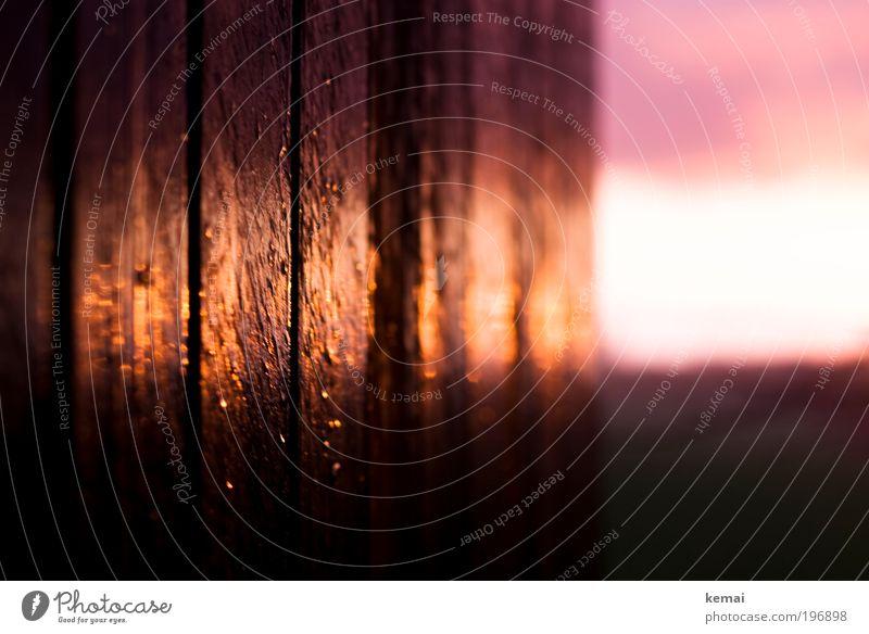 Allabendlich(t) Wasser Wassertropfen Sonne Sonnenaufgang Sonnenuntergang Sonnenlicht Klima Schönes Wetter schlechtes Wetter Unwetter Regen Tropfen Holzwand