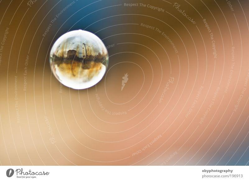 Könnte eine Welt in einer Blase sein. Erholung ruhig Meditation Schwimmen & Baden Freiheit Natur Schönes Wetter Spielzeug Schalen & Schüsseln Luftballon Glas