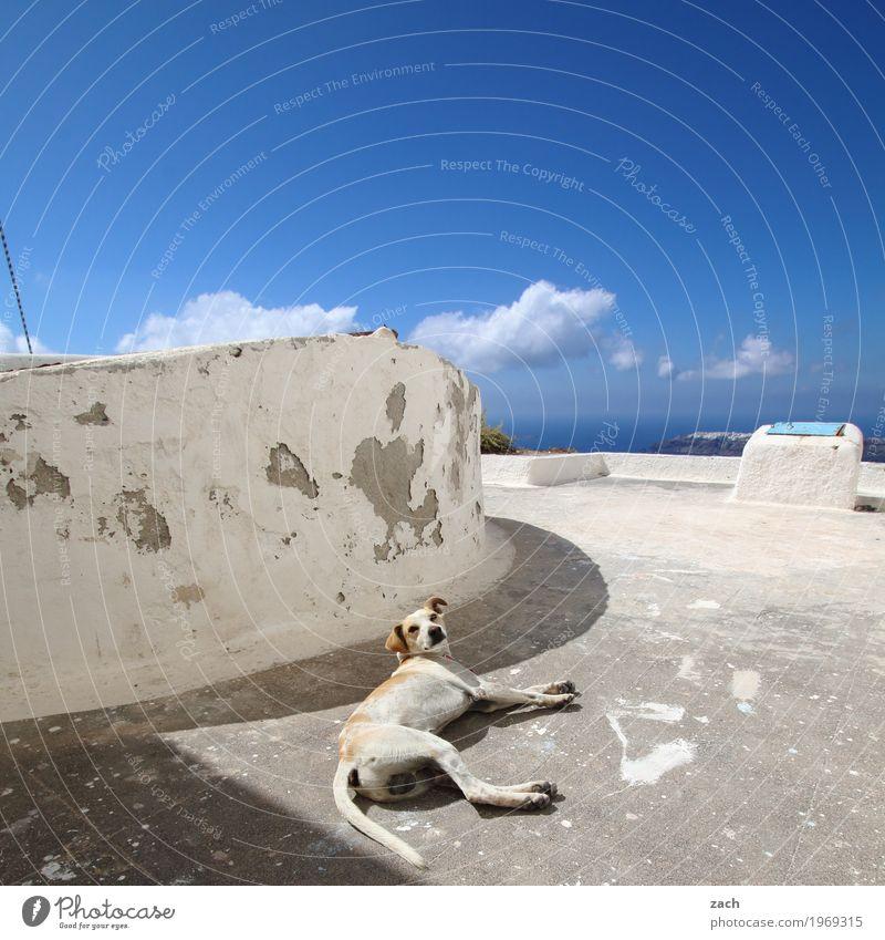 zammgebrochen | Hitzschlag Himmel Wolken Sommer Schönes Wetter Wellen Küste Meer Ägäis Mittelmeer Insel Kykladen Santorin Caldera Thira Griechenland Dorf