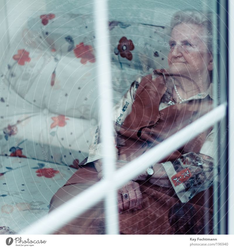 erinnerung Frau Mensch alt blau ruhig Einsamkeit Erwachsene Senior Traurigkeit Denken träumen Stimmung braun elegant sitzen Häusliches Leben