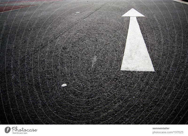 da lang! Ferien & Urlaub & Reisen Ferne Motorsport Platz Verkehr Verkehrswege Straßenverkehr Autofahren Verkehrszeichen Verkehrsschild Fahrzeug Pfeil Bewegung