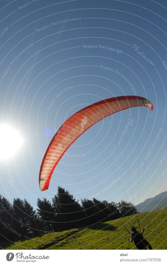 Schräger Vogel Himmel Mann Natur Sonne Sommer Freude Erwachsene Wald Wiese Umwelt Sport Landschaft Berge u. Gebirge Glück Wärme Wetter