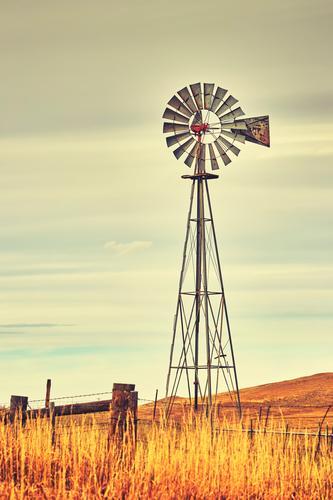Ein alter Westwindmühlenturm. Himmel Herbst Wind Gras Feld retro Energie Western Turm Bauernhof Windmühle ländlich Wilder Westen amerika Hintergrund Ackerbau