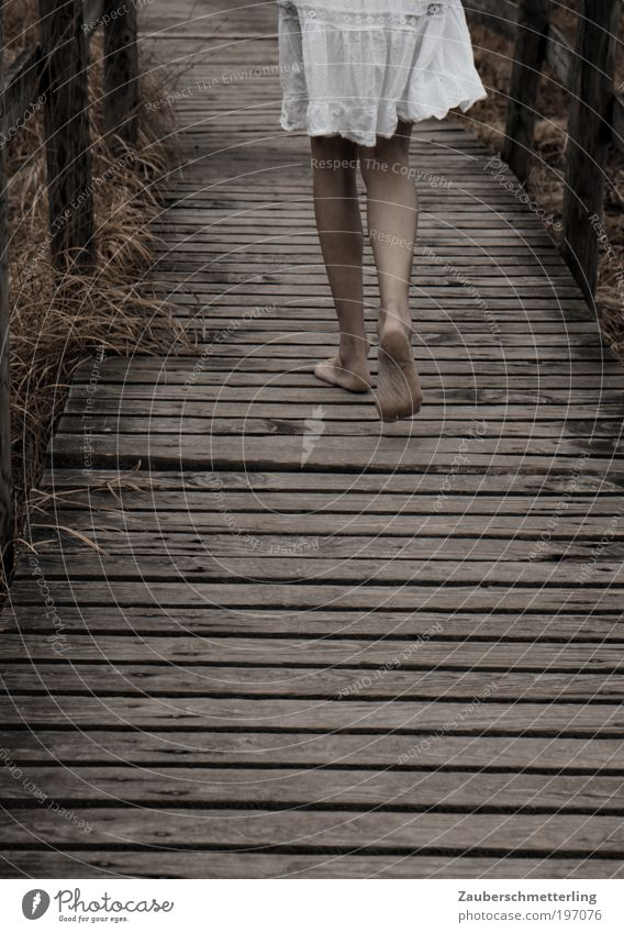 walk on the wild side Sinnesorgane feminin Junge Frau Jugendliche Beine Fuß Kleid Holz berühren gehen authentisch kalt Gefühle Stimmung Frühlingsgefühle