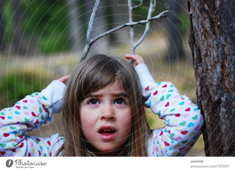 Jungtier Mensch Kind Natur weiß Baum Mädchen Spielen Holz braun Kindheit Wildtier natürlich frei Ausflug Jagd frech