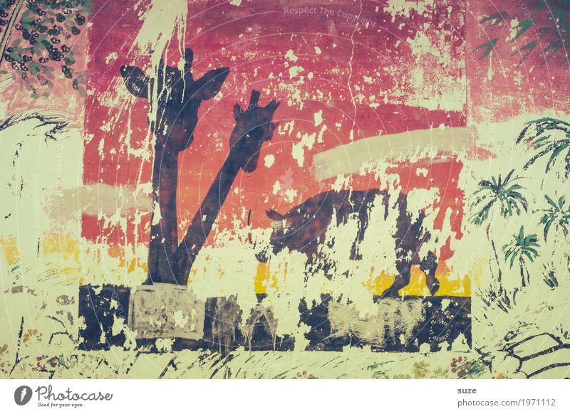 Kaputt | Freiwild Wand Graffiti Stil Kunst Freiheit Fassade Wildtier Kultur Armut Vergänglichkeit Wandel & Veränderung Vergangenheit tierisch Verfall Urwald