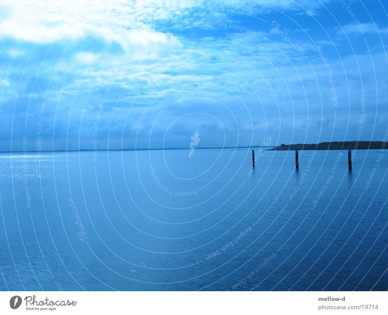 Deep blue sea Meer Aussicht Niederlande blau Himmel ruhig
