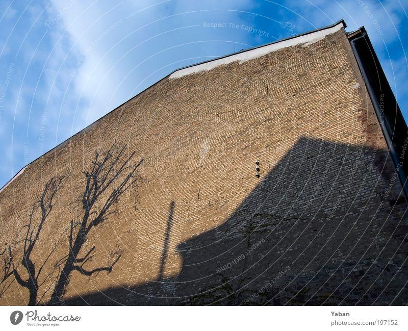 Shadow on the wall blau Haus Wand Mauer Gebäude braun Architektur Bauwerk Strukturen & Formen
