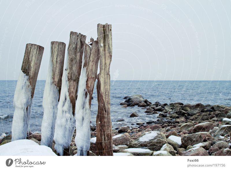 Standhaftigkeit Ferne Freiheit Strand Meer Winter Natur Urelemente Klima Wind Sturm Regen Eis Frost Schnee Küste alt entdecken stehen dehydrieren ästhetisch