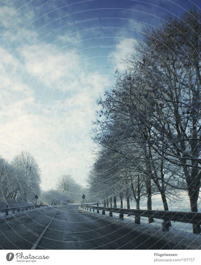 Vulkan stößt unvermindert Rauch und Asche aus! Himmel Baum Winter Arbeit & Erwerbstätigkeit Zufriedenheit Freizeit & Hobby Nebel Sicherheit Schutz Sturm