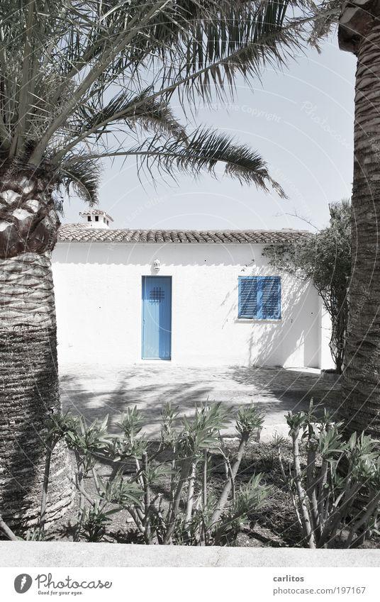 Baumhaus weiß blau Sommer Ferien & Urlaub & Reisen Fenster Garten Tür Fassade Tourismus Dach authentisch einfach Sauberkeit Häusliches Leben