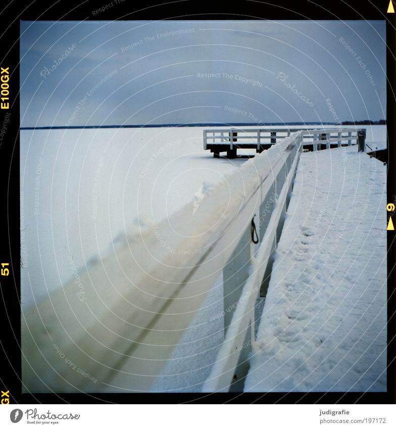Winter am Bodden Natur Himmel ruhig kalt Schnee Landschaft Eis Küste Umwelt Klima Hafen Spuren Steg Anlegestelle Geländer