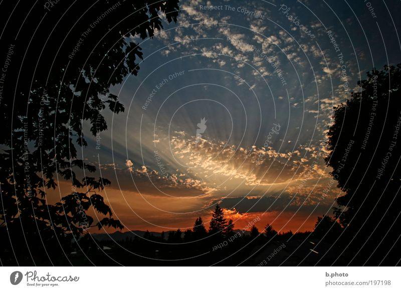 Sunset in Canada Himmel Natur blau weiß schön rot Sonne Sommer Wolken schwarz Wald Ferne Umwelt Landschaft Wärme Luft
