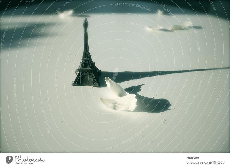 longing for Paris Ferien & Urlaub & Reisen ruhig Gefühle träumen Stimmung Design elegant ästhetisch Romantik Kitsch Spielzeug Zeichen Blumenstrauß Frankreich