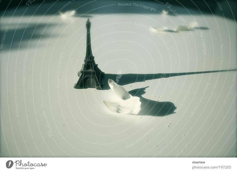 longing for Paris Spielzeug Blumenstrauß Kitsch Krimskrams Souvenir Sammlerstück Zeichen Eiffelturm Tour d'Eiffel Blütenblatt Gefühle Stimmung Frühlingsgefühle