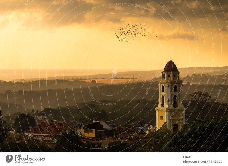 Bestimmung Natur Landschaft Himmel Wärme Kirche Platz Bauwerk Gebäude Sehenswürdigkeit Wahrzeichen Vogel Schwarm fantastisch historisch Gefühle Stimmung