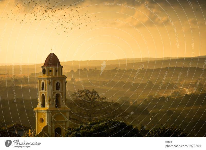 Lebensabend Ferien & Urlaub & Reisen Städtereise Natur Landschaft Himmel Stadtrand Kirche Platz Bauwerk Gebäude Sehenswürdigkeit Wahrzeichen Vogel Schwarm