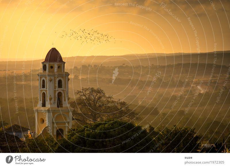 Himmelsboten Ferien & Urlaub & Reisen Natur Landschaft Stadtrand Kirche Platz Bauwerk Gebäude Sehenswürdigkeit Wahrzeichen Vogel Schwarm fantastisch historisch