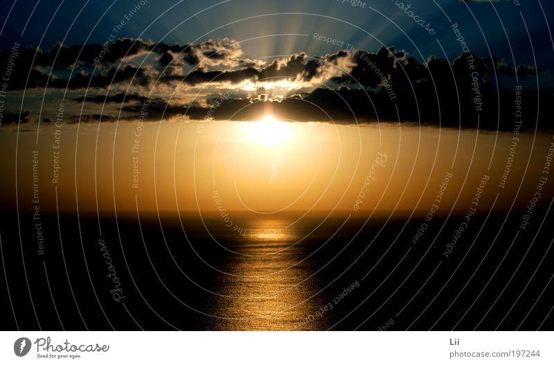 Sonnenuntergang Natur Himmel Meer blau Sommer Ferien & Urlaub & Reisen ruhig schwarz Wolken gelb Ferne Erholung Landschaft braun