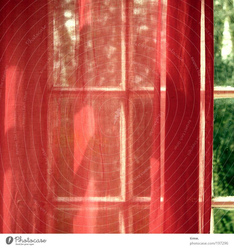 Wintergarten im Frühling grün Baum rot Sonne Farbe Fenster Wärme geheimnisvoll zart Kreuz Vorhang leicht Verliebtheit Gardine Textilien verdeckt
