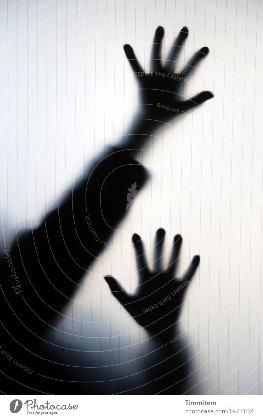 ...higher... Freude Spielen Arme Hand Finger 1 Mensch theatralisch Glasscheibe bedrohlich gruselig schwarz Gefühle Angst übertrieben Farbfoto