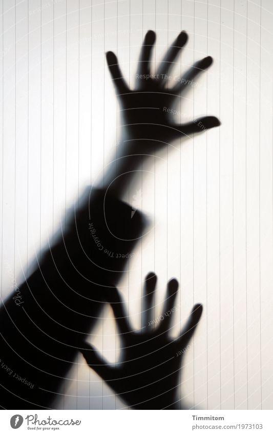 ...and higher! Freude Spielen Arme Hand Finger 1 Mensch theatralisch Glasscheibe bedrohlich gruselig schwarz Gefühle Angst übertrieben Farbfoto