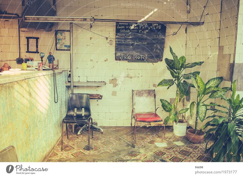 Ladenhüter alt Pflanze Haus dreckig trist Schilder & Markierungen Kultur Vergänglichkeit kaputt geschlossen Vergangenheit Stuhl Kuba Ladengeschäft Nostalgie