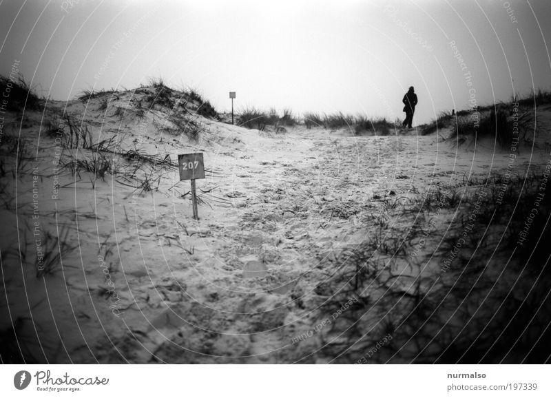 ortho 207 wandern Ferien & Urlaub & Reisen Ausflug Ferne Freiheit Mensch 1 Natur Landschaft Sand Herbst Gras Küste Strand Ostsee Darß Zeichen Ziffern & Zahlen