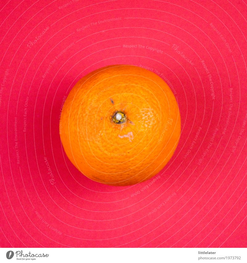 fröhliche Orange schön rot Essen Gesundheit orange rosa Frucht frisch Fröhlichkeit lecker Frühstück Bioprodukte exotisch Vegetarische Ernährung Diät